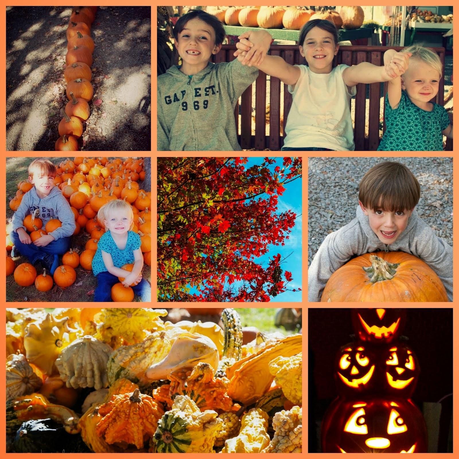 Orange, October's Favorite Color