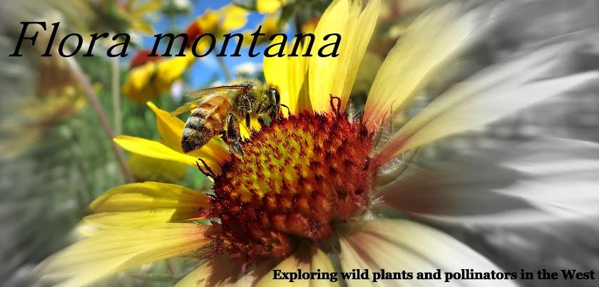 Flora montana