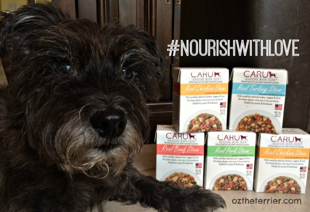 Oz the Terrier invitation to #NourishWithLove Twitter Party for Caru Pet Food