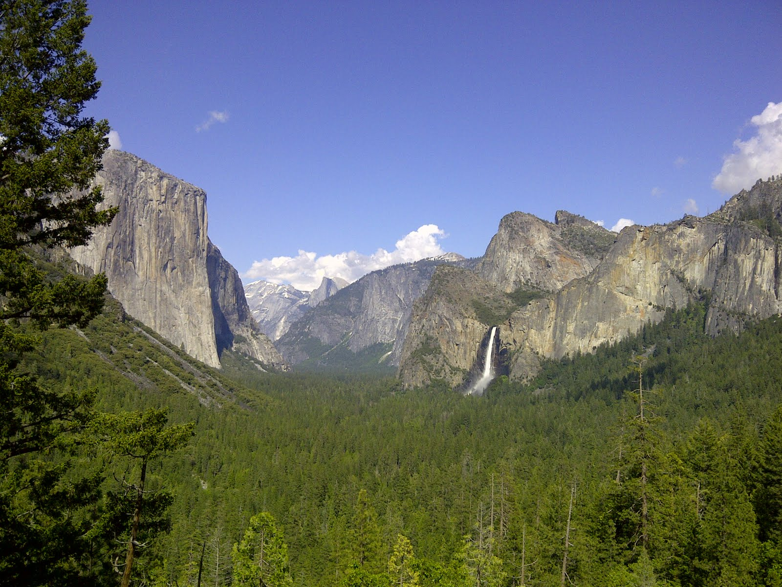 Stream report early june news for Fishing in yosemite