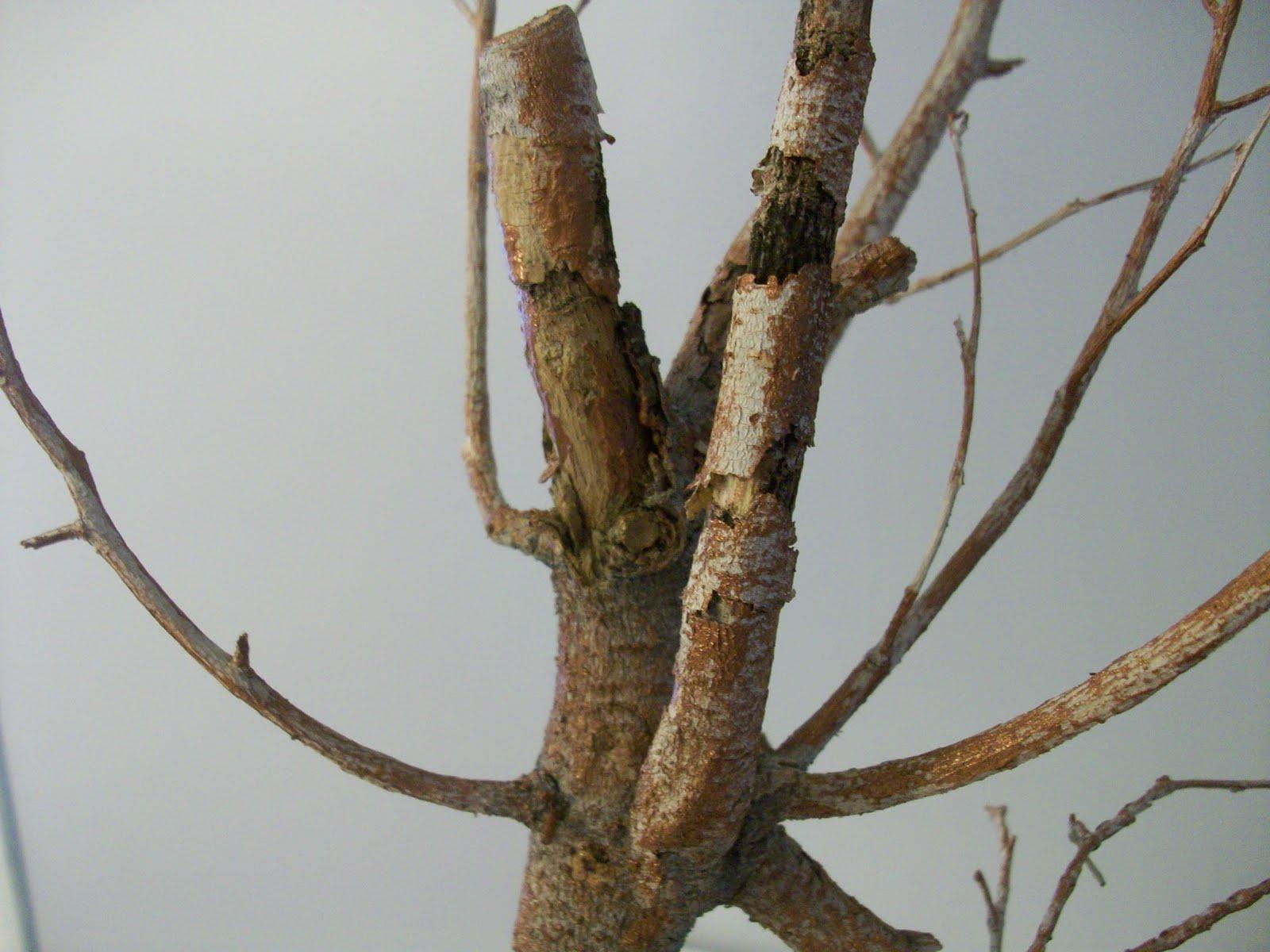 Centros de mesa con ramas secas imagui for Decoracion con ramas secas