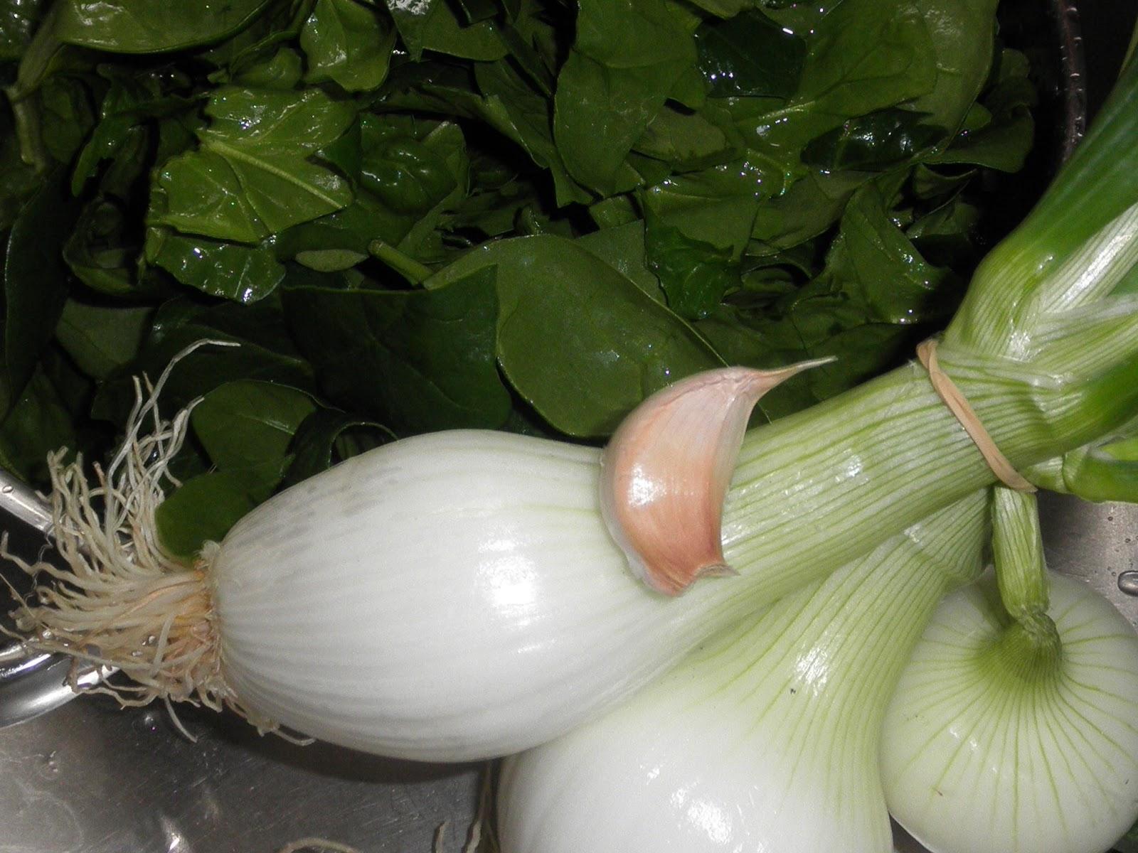 cebollas,espinacas