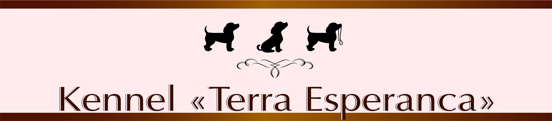 "Біглі ""Terra Esperanca"": Barstail Elsinore Heart & Zarina Esperanca Od Troch Tabiel"