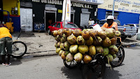 Vendeur ambulant de noix de cocos