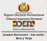 Averigua donde votar y si eres jurado Electoral en Beni y Tarija