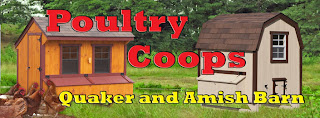 Buy a poultry barn chicken coop online