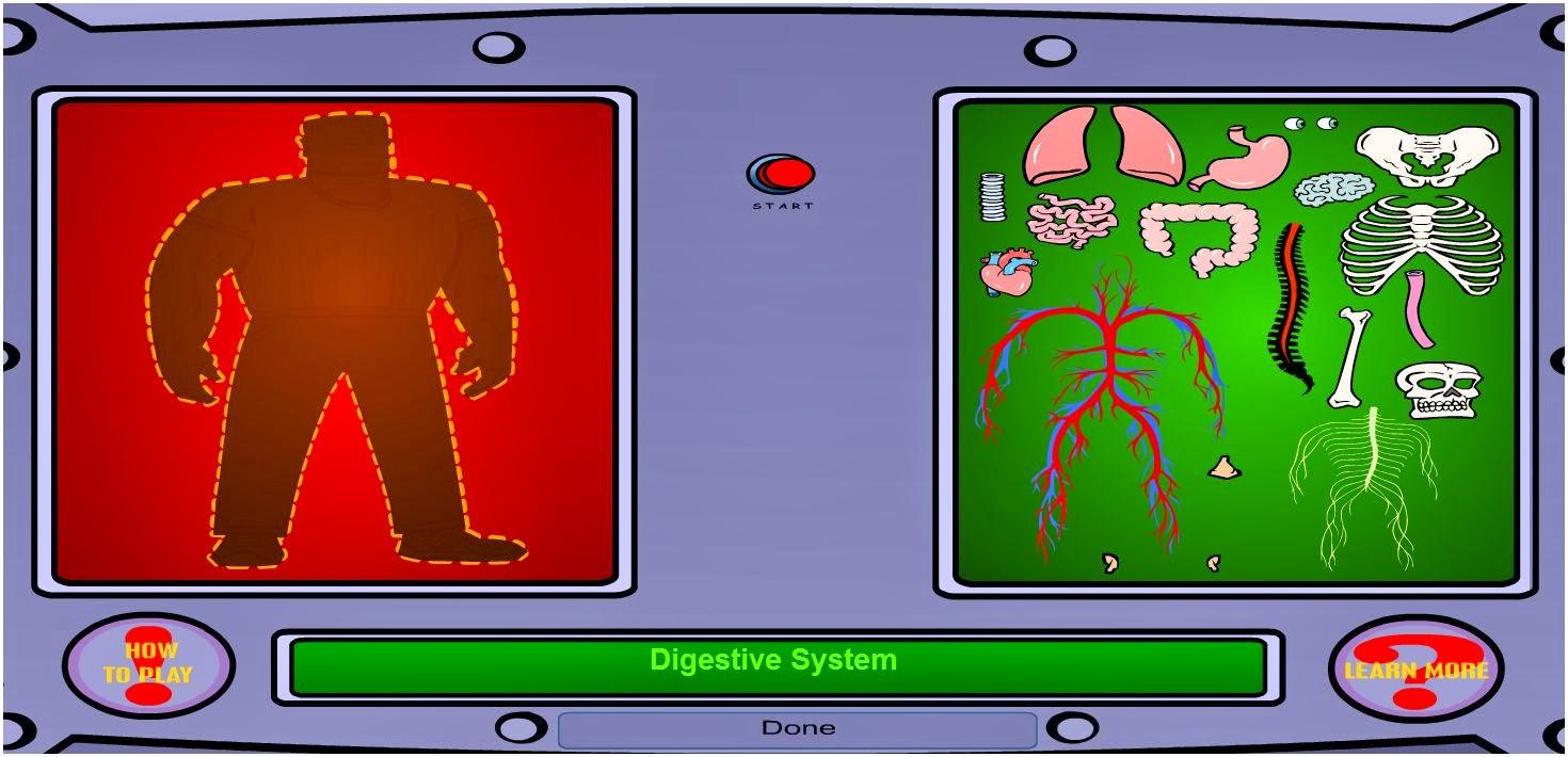 http://sciencenetlinks.com/interactives/systems.html