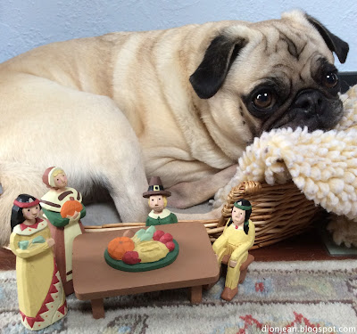 Pug in his bed is ready for Thanksgiving