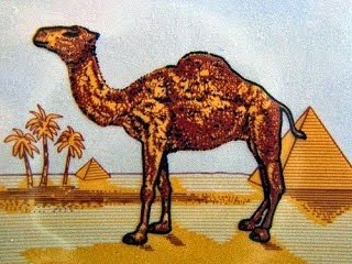 Κάτι που σίγουρα ΔΕΝ είχατε παρατηρήσει ποτέ στο πακέτο τσιγάρων CAMEL… [photo]