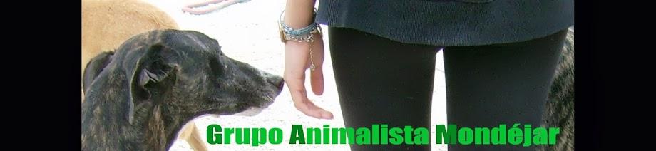 Grupo animalista mondéjar