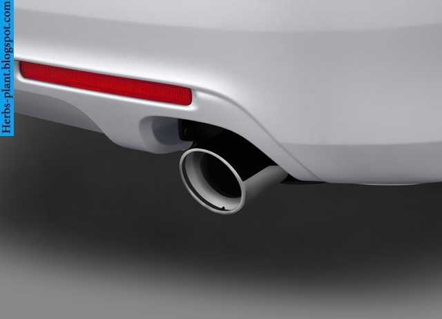 Acura tsx car 2013 exhaust - صور شكمان سيارة اكورا تي اس اكس 2013