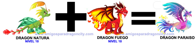 como sacar el dragon paraiso en dragon city combinacion 2