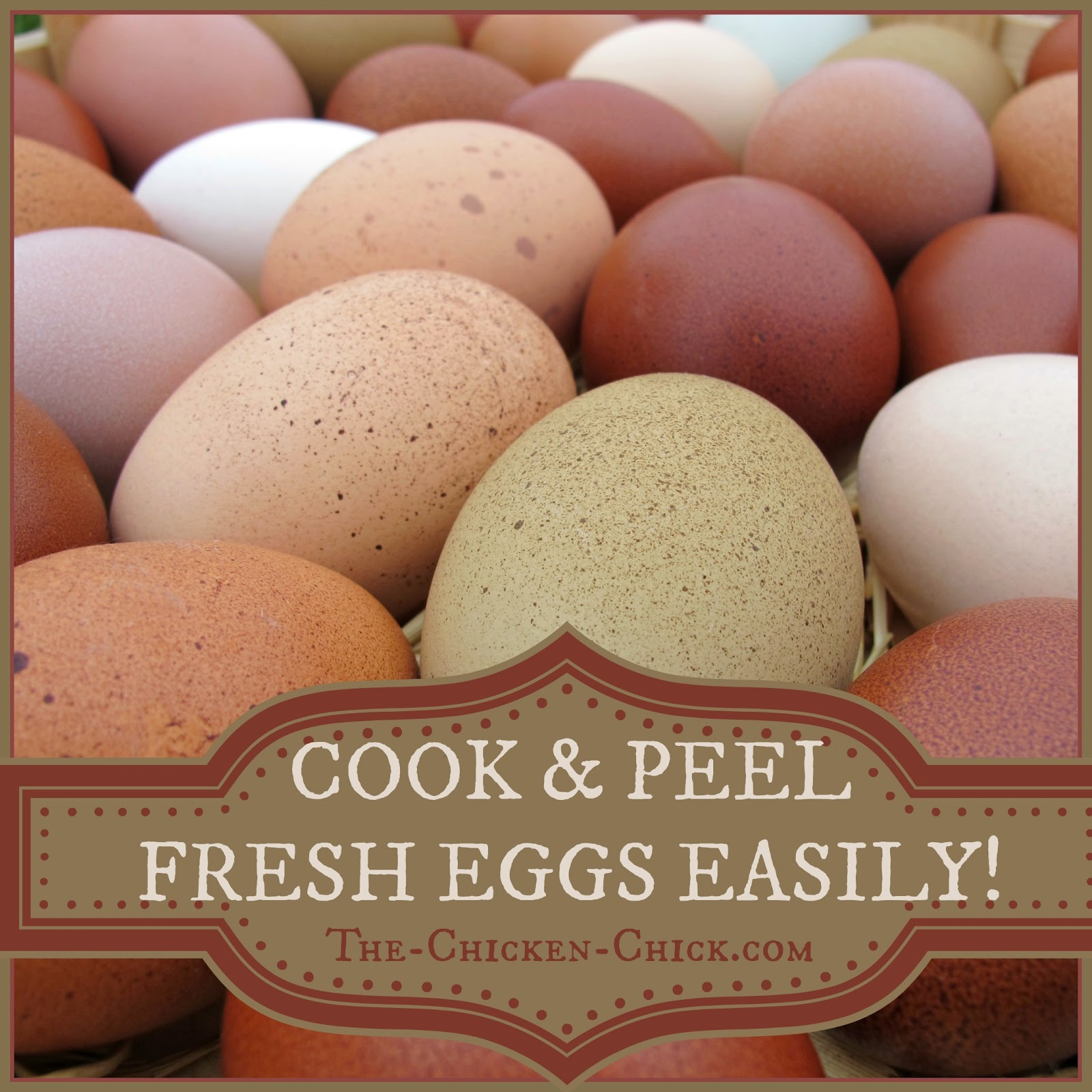 Ever Wonder Why Storebought Eggs Are So Easy To Peel? Simply Put