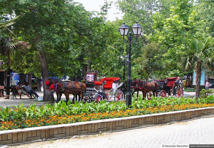 Конные экипажи в парке Созополя | Horse-drawn Carriages in the Park of Sozopol