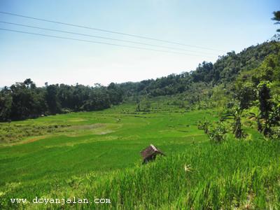 Wisata Curug Citambur