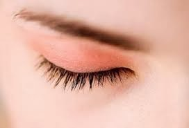 Heart Disease Detection Through Eyelid