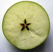 [Pilt: PENTACLE+APPLE.jpg]