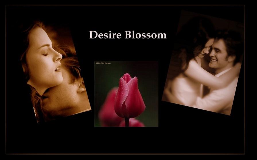 Desire Blossom
