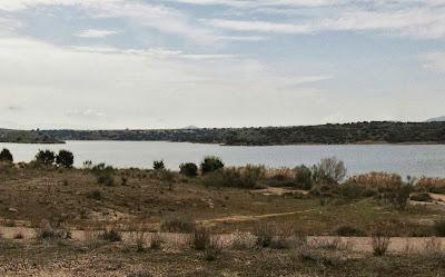 Orillas cerca de la presa de Guajaraz