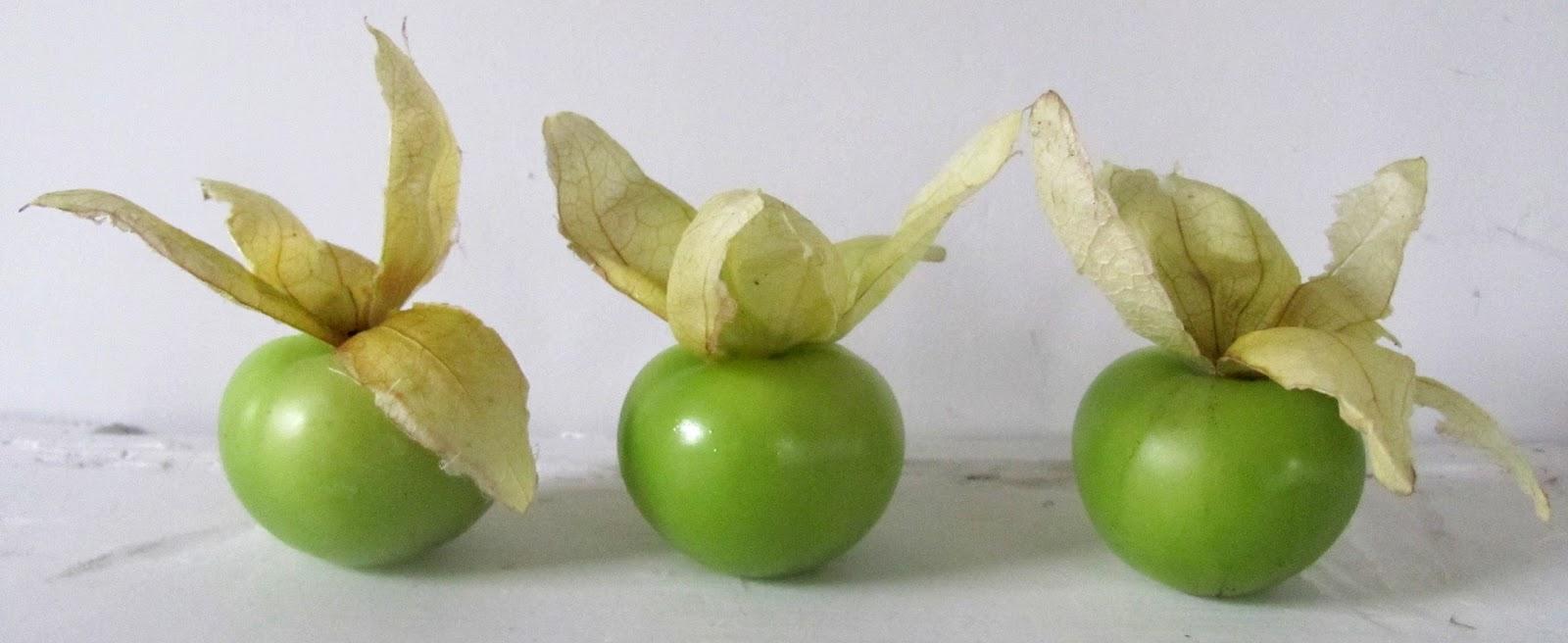 Sweet Domesticity: Tomatillo Pico de Gallo