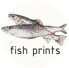 Fish prints
