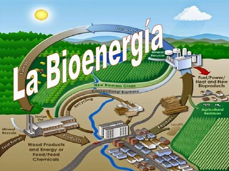 Más de la bioenergía