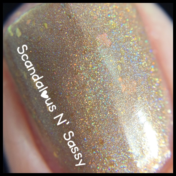 Darling Diva Polish Rey macro