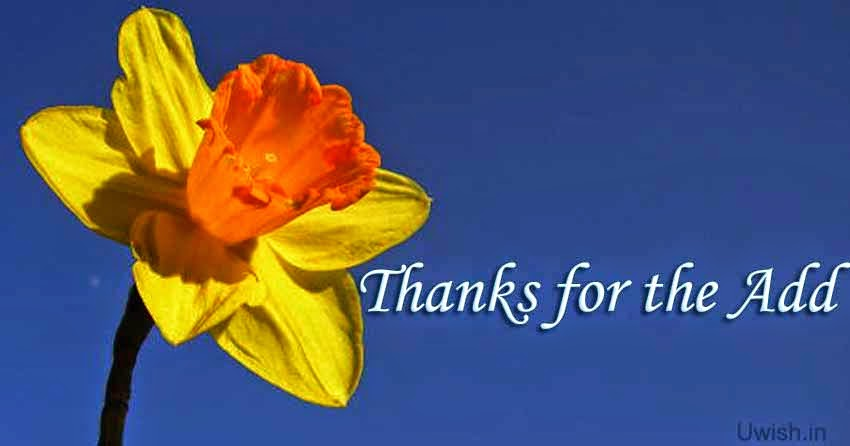 Thanks for the add e greeting cards and wishes with a flower