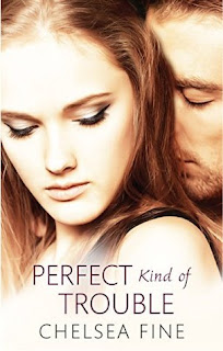 https://www.goodreads.com/book/show/23538967-perfect-kind-of-trouble