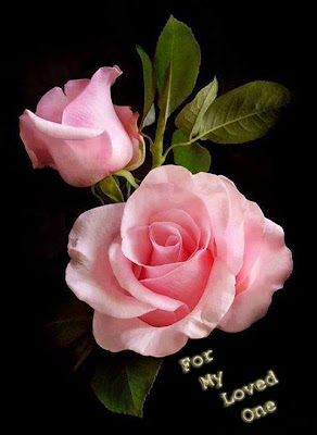 i love you with pink rose