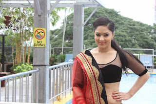 Nikesha Patel in Beautiful Saree and Transparent Black Blouse Sizzling Stills