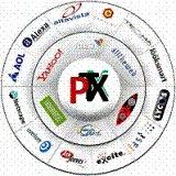 PAULOPTX2010