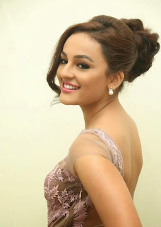 Seerat Kapoor Stills at Tiger Movie Audio Launch 7.jpg