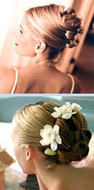 orquideas para el pelo