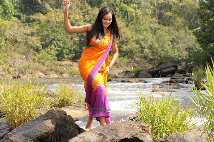shanvi spicy galley in saree