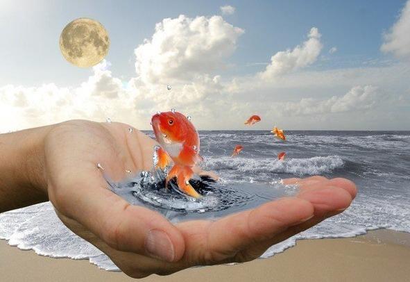Как исполнить мечту и желание, Загадывание и исполнения желаний, мечты сбываются