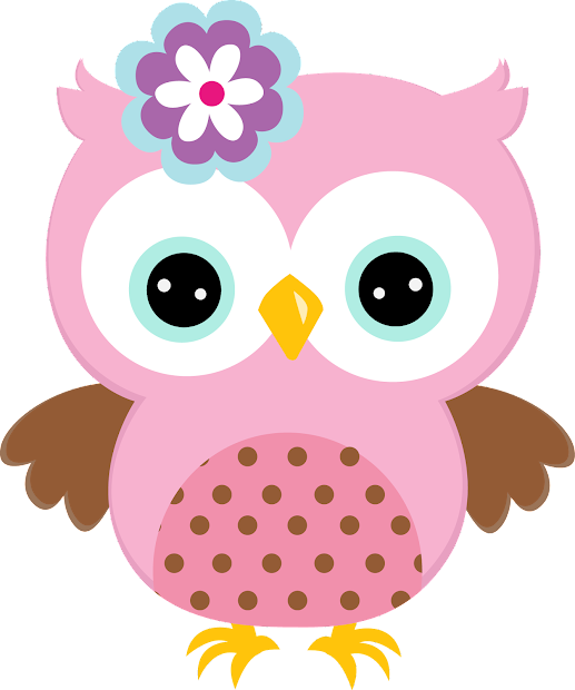 quinceanera owls in colors clipart