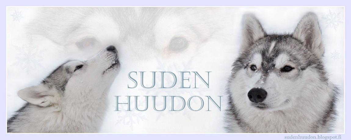 Suden Huudon