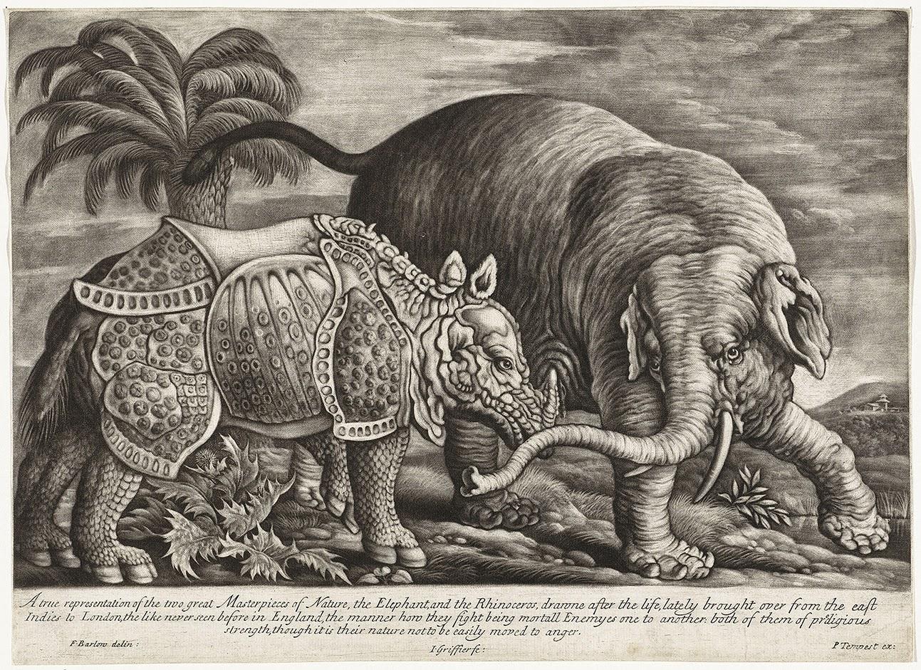 Jan Griffier, Francis Barlow y Pierre Tempest, Elefante y rinoceronte