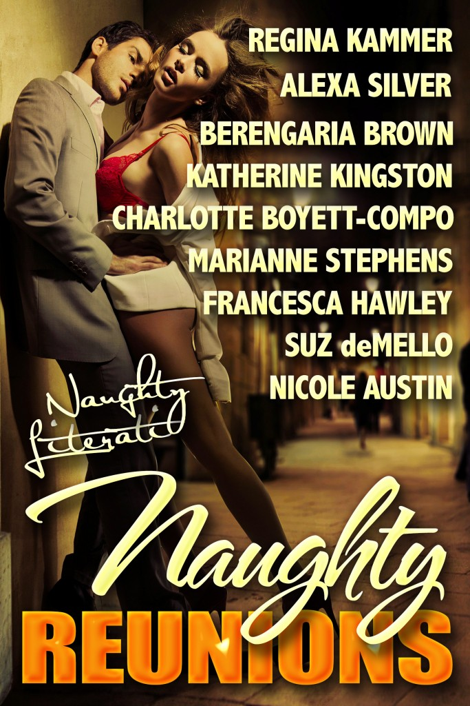 Naughty Reunions Anthology