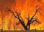 Asalnya Api di Bumi dari Api Neraka