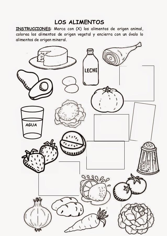Somos lo que comemos!: Ficha para clase: clasificación de alimentos