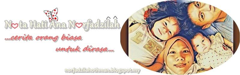 °*.♥.*°  Nota Hati Ana NorFadzilah   °*.♥.*° cerita orang biasa untuk dirasa