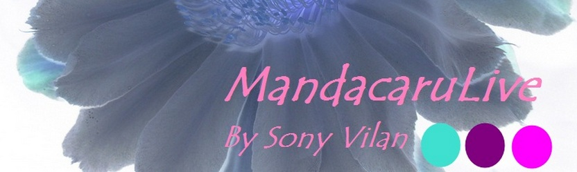 MandacaruLive