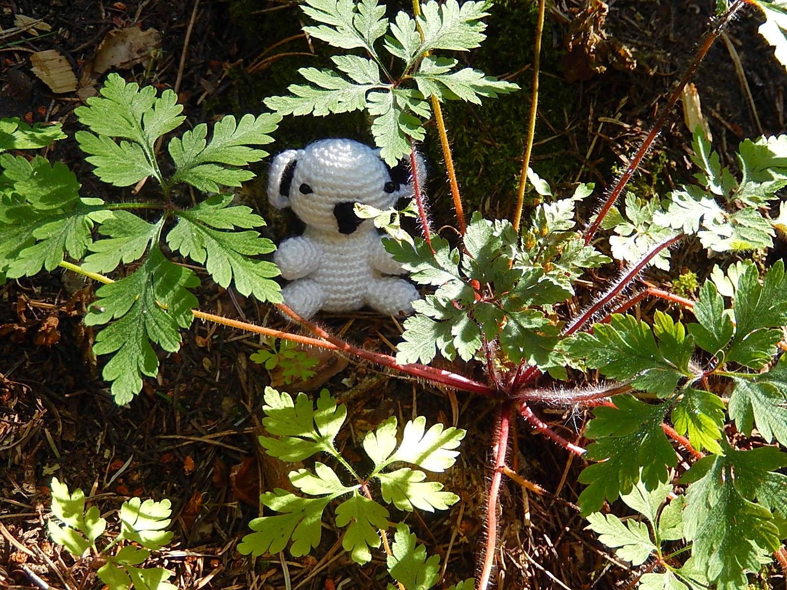 tığ işi beyaz koala