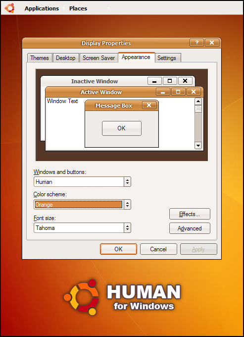Download Human Ubuntu For Windows Theme