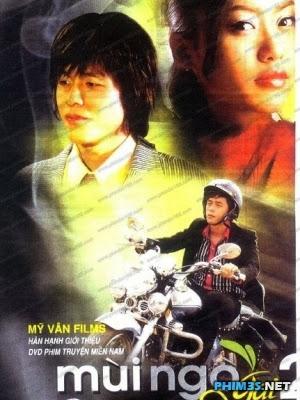 phim Mùi Ngò Gai