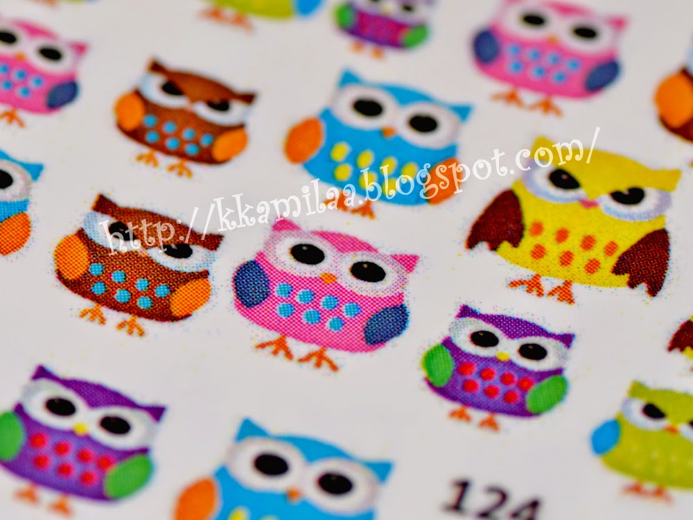 Cute Owls Everywhere!