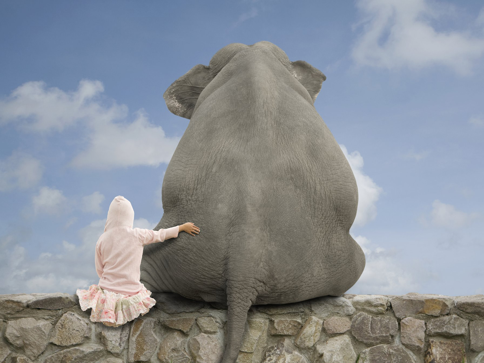 Popular Wallpaper High Quality Elephant - sitting-with-elephant  Gallery_119198.jpg