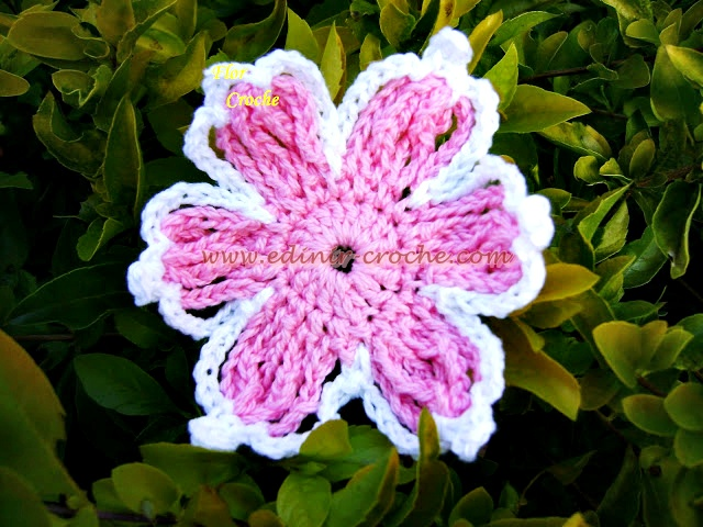 flores em croche da coleção aprendi e ensinei com edinir-croche dvd video aula frete gratis